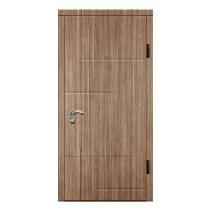Входные двери Феран Модель Ф203